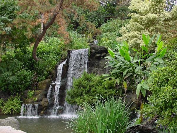 los angeles arboretum botanical gardens